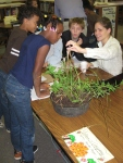 third grade habitat experts 020
