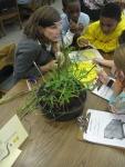 third grade habitat experts 024