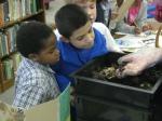 third grade habitat experts 028