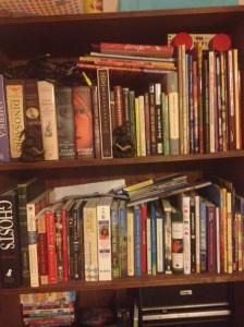 My bookshelf