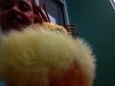 Barrow #WRAD15 Selfie (42)