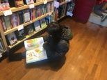 avid book budget (3)