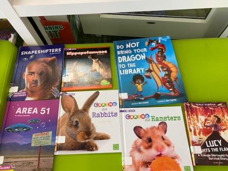 book budget display (11)