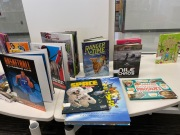 book budget display (8)